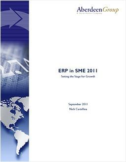 ERP in SME: Setting the Stage for Growth