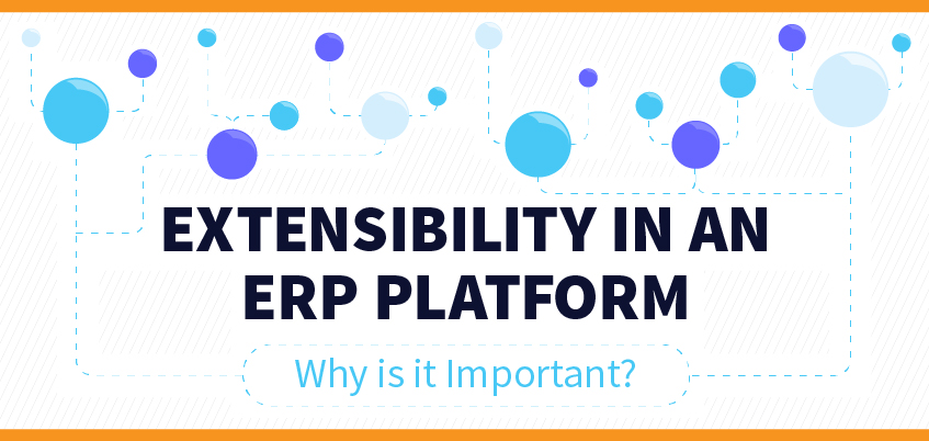 ERP Extensibility Importance