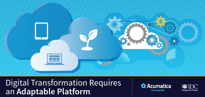 IDC Infographic: Digital Transformation Requires an Adaptable Platform